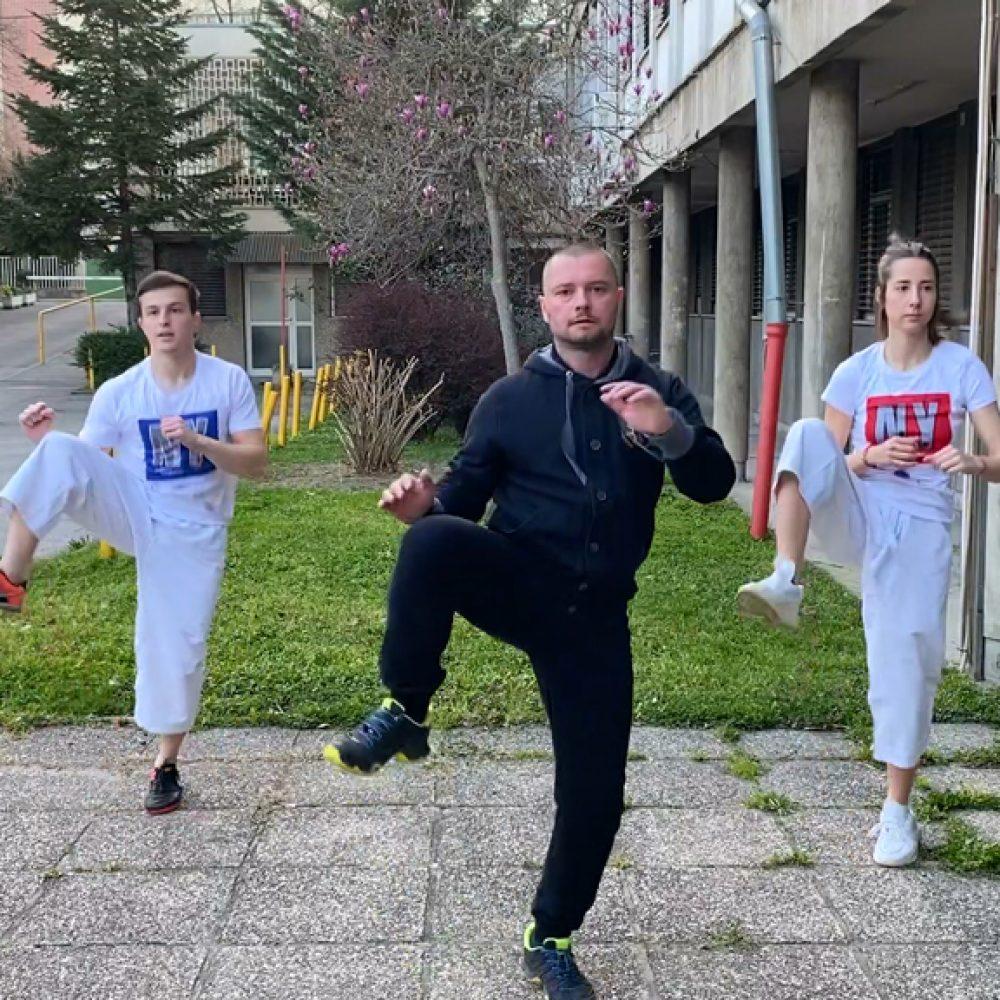 Nanbudo vježbe za online školu