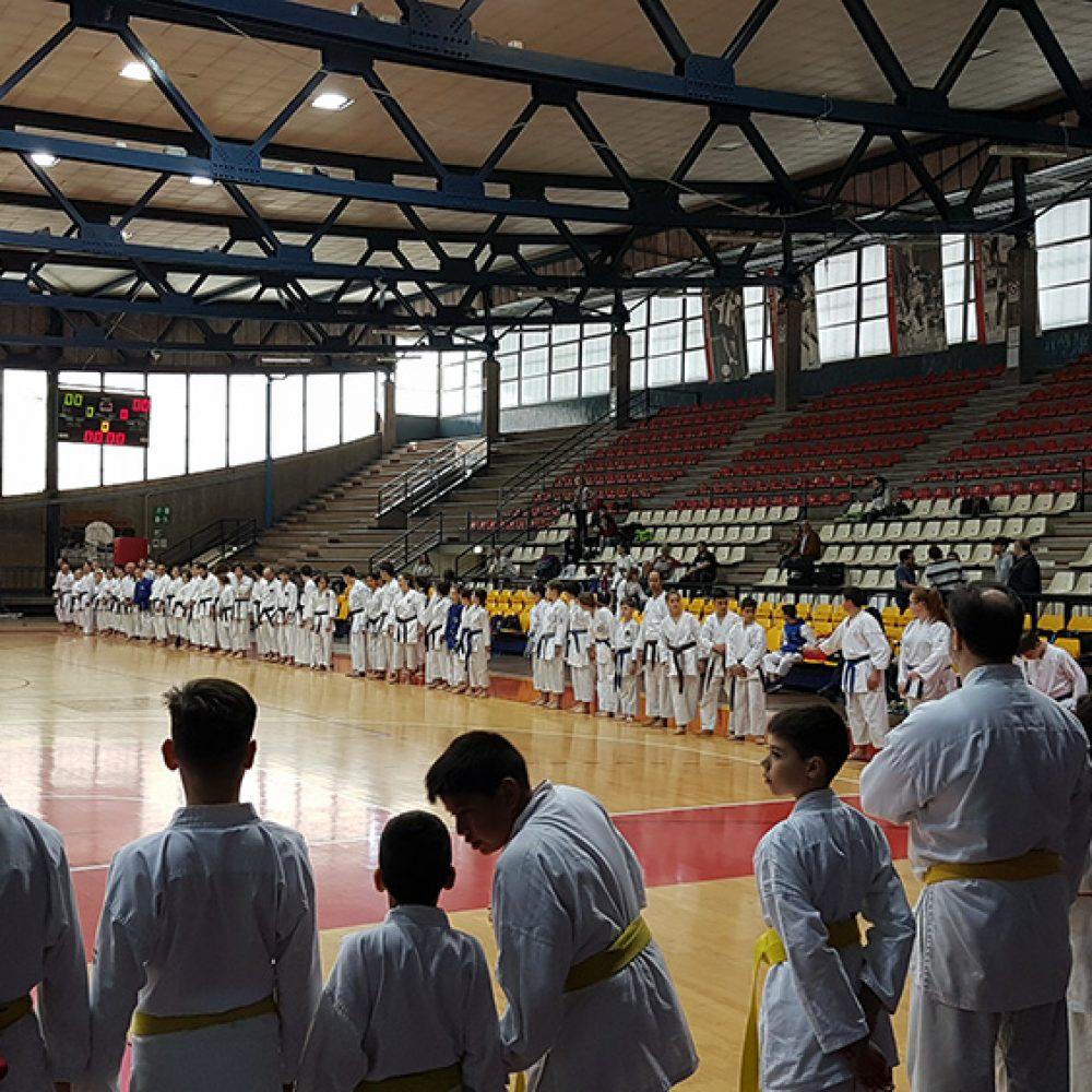 Na prvenstvu u Riminiju Hrvatima pregršt medalja
